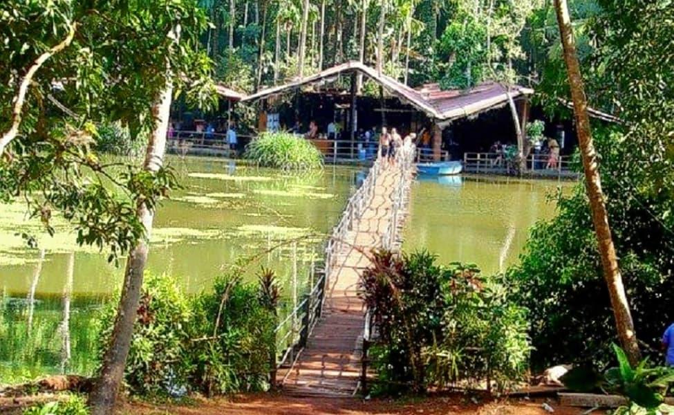 goa-untraveled-farm-stay-in-a-tropical-spice-plantation-2